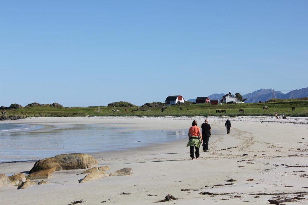 The Hov Beach